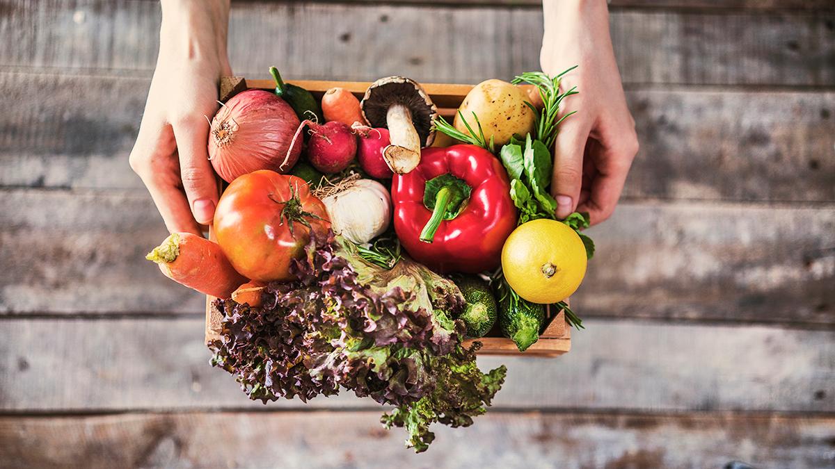 Hábitos alimentarios saludables
